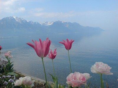 Na břehu Ženevského jezera (nahrál: Alla Mogilevska)