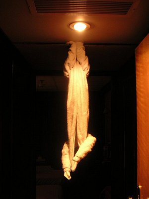 Zvířátko z ručníku (nahrál: admin)