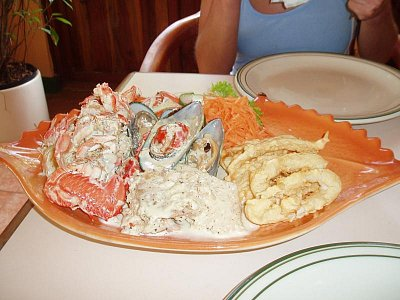 fish plate (nahrál: admin)