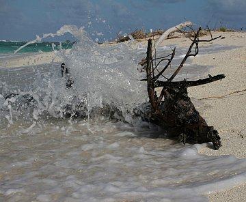 Karibik 2006